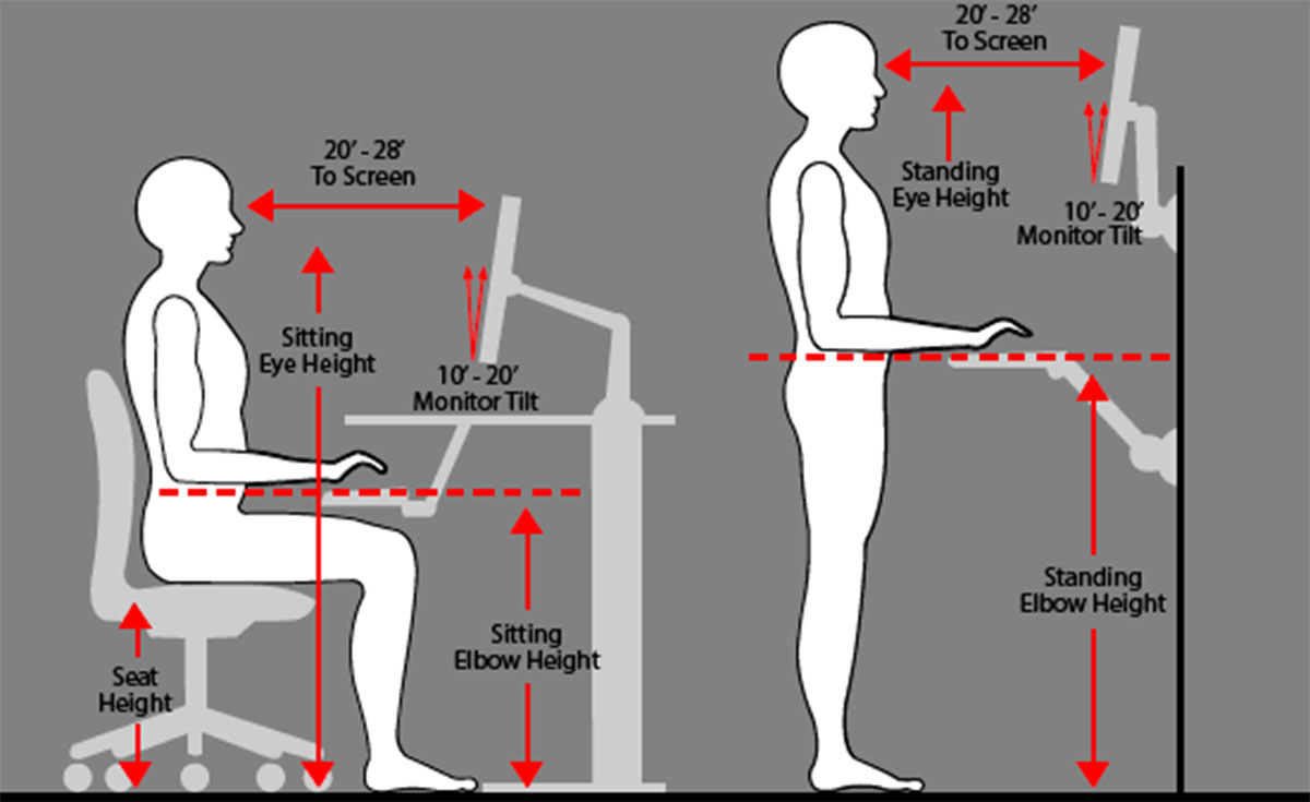 Ergonomics And Posture For Computer Users Avadirect